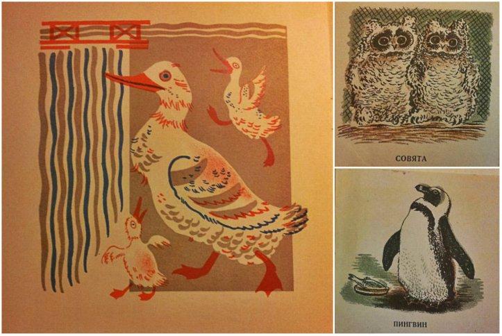 collage dieren meermanno
