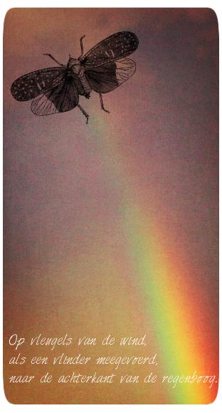 Vleugels van de wind