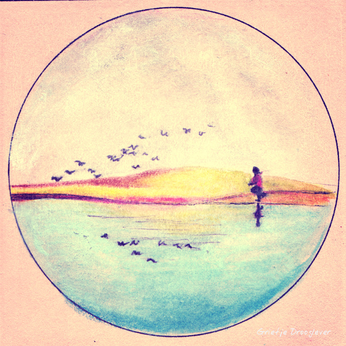 vogels vangen blog