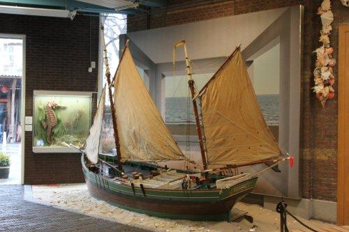 muzee boot